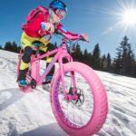 Maxx Individualbike Pink