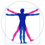 orthopaedische-probleme