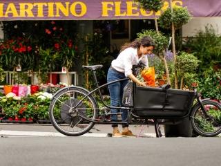 Douze Cycles Blumentransport