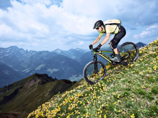 Simplon Steamer Carbon Downhill
